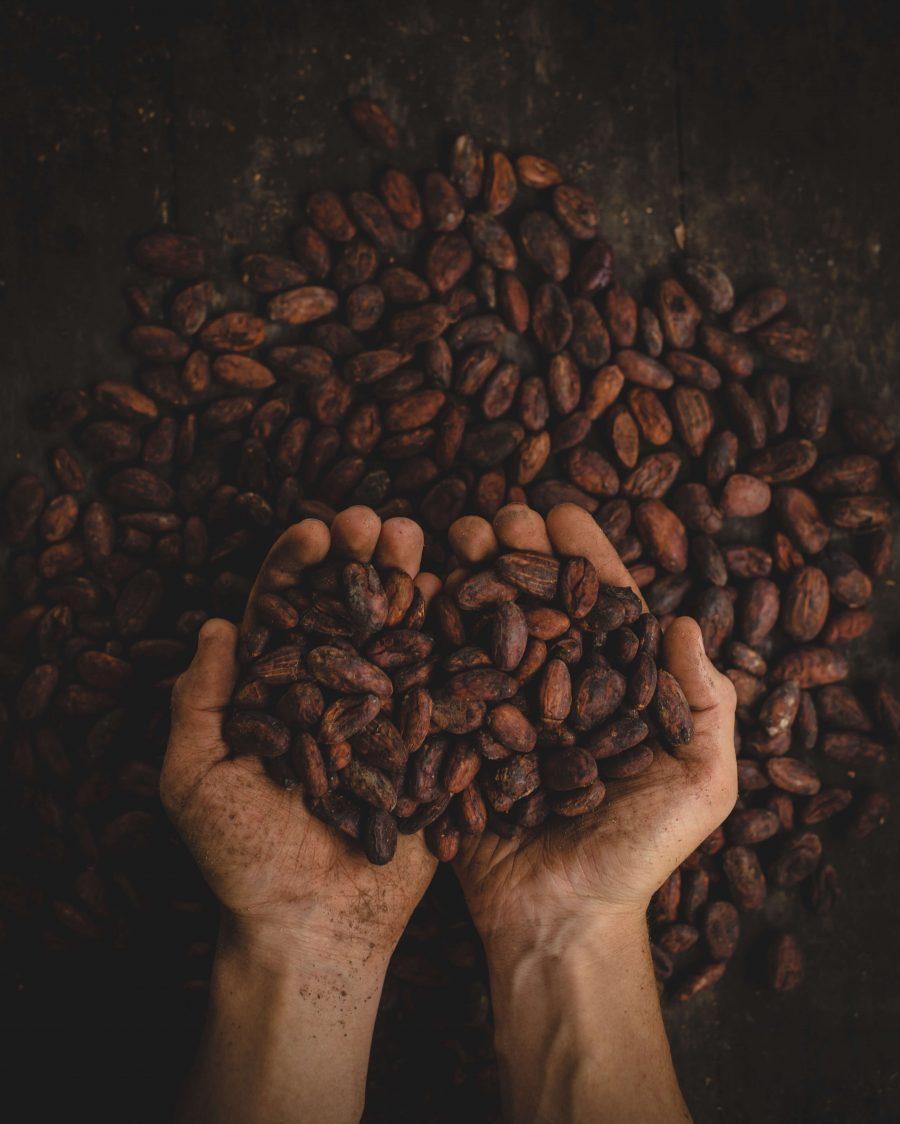 Les meilleurs cafés d'Amérique du sud